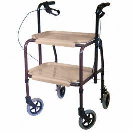 Strolley trolley